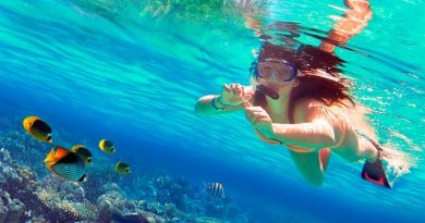 best things to do in andaman and nicobar islands
